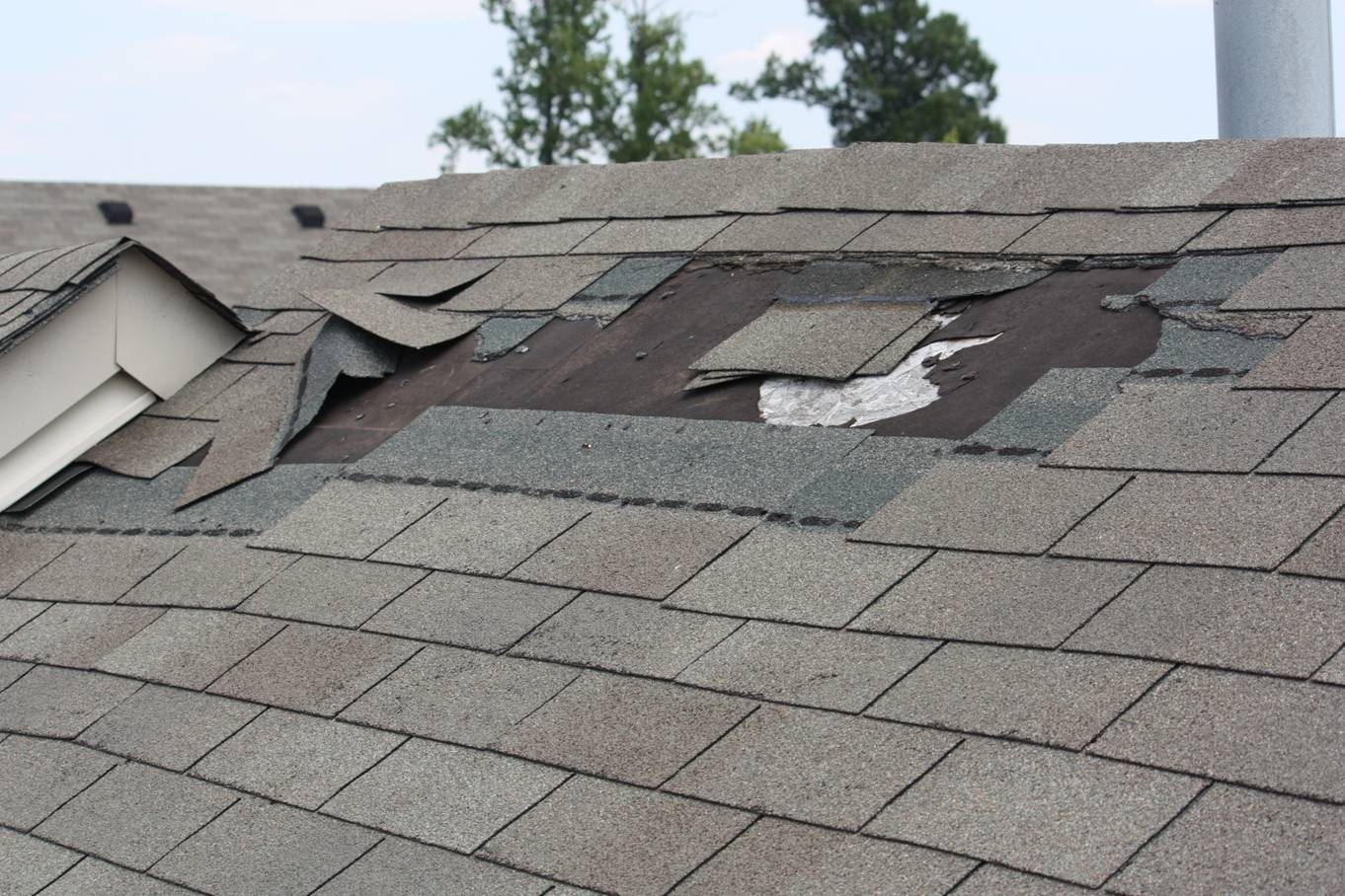 Shingle Maintenance and Repairs